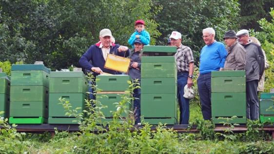 Günter Kleinhans zeigte beim Auftakt des SPD-Projektsommers seine Bienenvölker in Stroit.